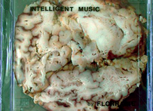 Intelligent music 2004